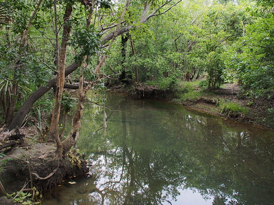 20180101_1746_0029 Yankee Pools, Rapid Creek, country of the Larrakia people