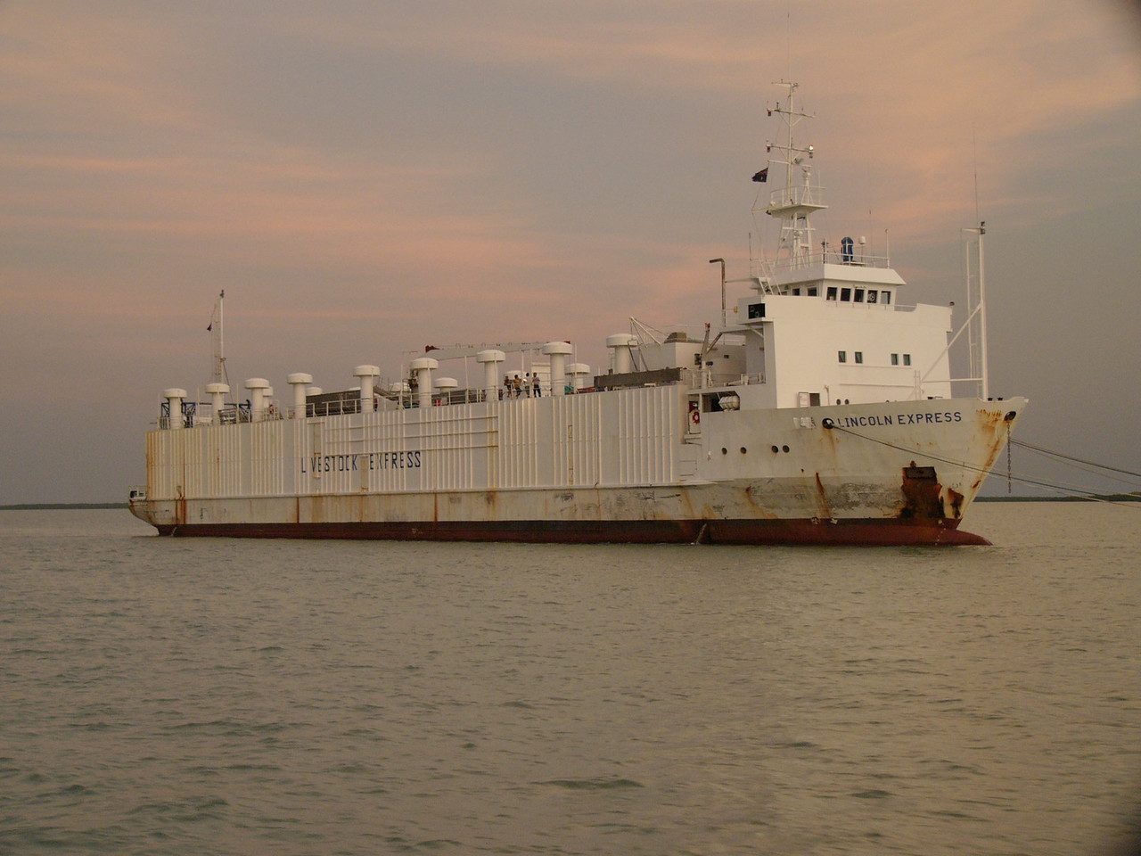 Livestock transport ship on Darwin harbour. Live animals, cattle and sheep, are transported from Australia to other countries (mostly Muslim, who have ceremonial and ritual traditions regarding slaughter and sacrifice). The trade is sometimes controversial, since some animals die during the voyage.