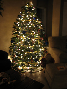 Our Christmas tree - 2008.