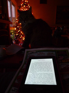 "December Photo a Day - Day 28 - Words  Reading ""High Heeled Mysteries"" on my paper white Kindle with Kitty Witty and enjoying the tree at the same time!"