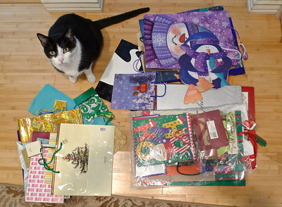 December Photo a Day - Day 10 - Wrapping Paper  Actually, I use bags 99% of the time! MacDuff always likes to help....