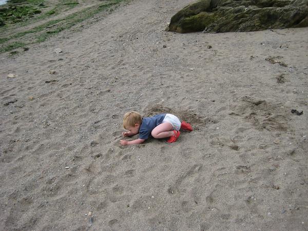 Devon August 2009