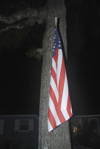 On a windless Florida 4th of July in 2008 this flag graced the front yard of a house and represents the countless flags in front of countless houses throughout America.