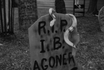 27 A goner on Halloween