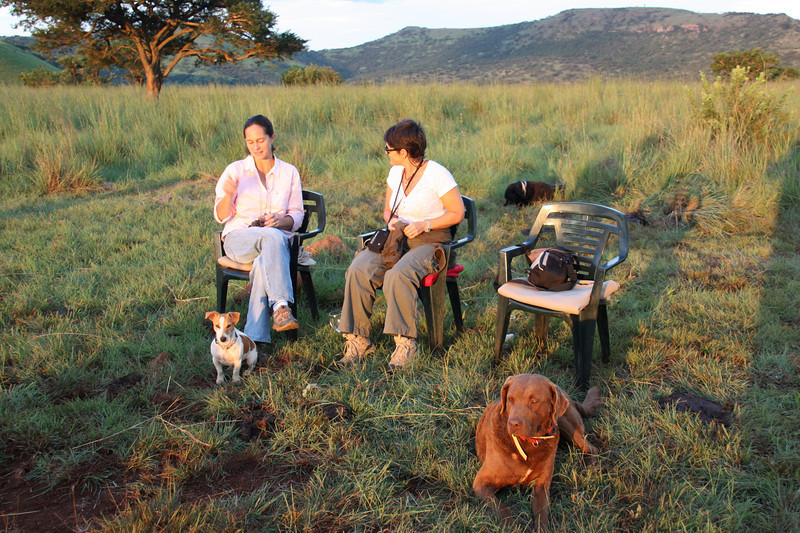Arrival at Three Tree Hill Lodge: sundowners with Dogs!