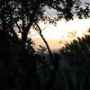 Dawn at Three Tree Hill