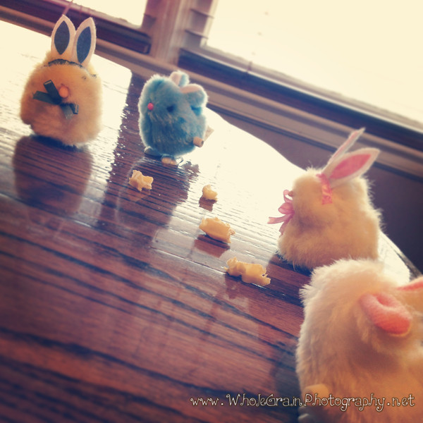 20130319_Easter_1006