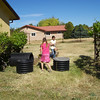 Over by the grape-vines. The corogated tube with the gray top, is their new compost bin.