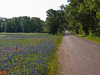 Kruppa Road and the scent of bluebonnets.