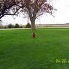 Wyatt hunting for Easter eggs  ( 2003 )