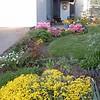 Flowers Easter morning