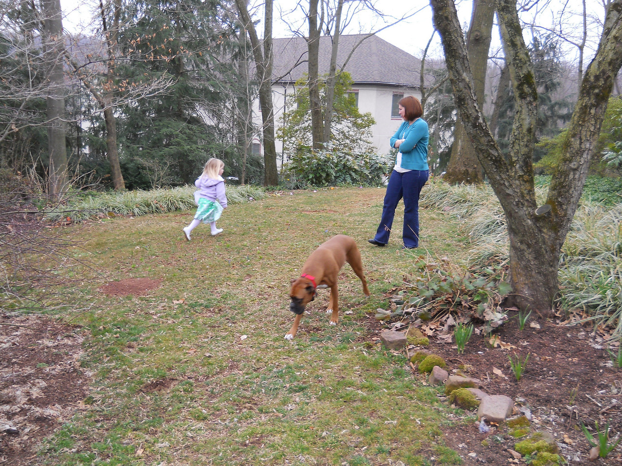 Even Daisy got into the act.  A few days later, she found an egg the girls missed and got herself some candy.