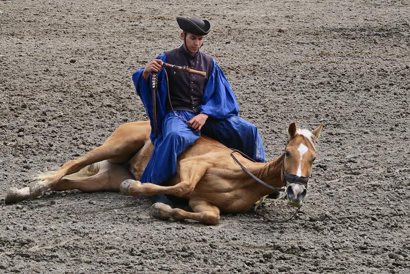 Hungary - Kalocsa - Horse Ranch and Show 357