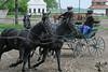 Hungary - Kalocsa - Horse Ranch and Show 174