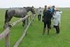 Hungary - Kalocsa - Horse Ranch and Show 304