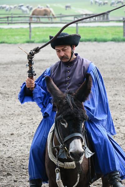 Hungary - Kalocsa - Horse Ranch and Show 043