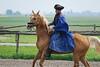 Hungary - Kalocsa - Horse Ranch and Show 013