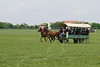 Hungary - Kalocsa - Horse Ranch and Show 293