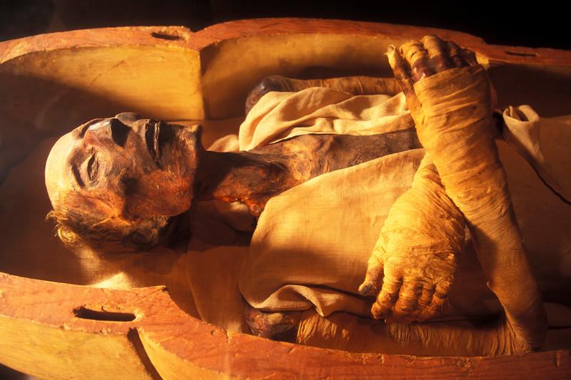 76088548PL003_Mummies