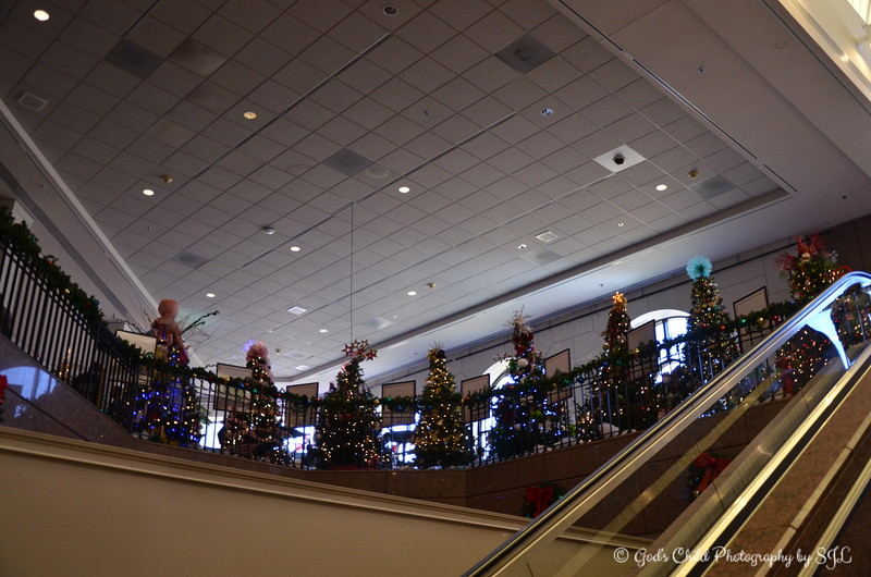 "December 2, 2017<br /> <br /> ""Christmas trees on display from November 18, 2017 – December 31, 2017. This is a 65 year-old Memphis tradition. Each year, I try to make my annual pilgrimage to see the trees in support of LeBonheur Children's Hospital.""<br /> <br /> ""The story goes like this; ""Once upon a time, an enchanted forest intrigued children and adults alike and brought magic. Teddy bears beckoned, elves were busy at work, penguins played in the snow, while Santa waited to hear holiday wishes. This fairy tale-like forest of glittering lights dazzled the young and young-at-heart.""<br /> <br /> ""Gingerbread Village is a snow-covered village of scrumptious creations awaits you! From cozy cottages to majestic mansions, all are designed by local chefs, businesses, individuals and groups. The Model Train is a miniature train twists and turns throughout a snow-covered village, inspiring the imagination of children and adults alike.""<br /> <br /> ""ENCHANTED FOREST FESTIVAL OF TREES"" 2017<br /> Pink Palace Museum<br /> 3050 Central Avenue<br /> Memphis, TN 38111<br /> <br /> Official website: <br /> <br /> <a href=""http://www.memphismuseums.org/exhibit-12056/"">http://www.memphismuseums.org/exhibit-12056/</a>"