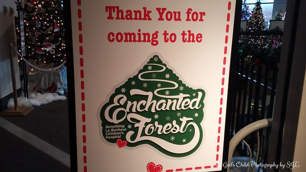 """December 2, 2016<br /> <br /> """"ENCHANTED FOREST FESTIVAL OF TREES AND GINGERBREAD VILLAGE"""" 2016<br /> <br /> Pink Palace Museum<br /> 3050 Central Avenue<br /> Memphis, TN 38111<br /> <br /> Official website: <br /> <br /> <a href=""""http://www.memphismuseums.org/exhibit-12056"""">http://www.memphismuseums.org/exhibit-12056</a>"""