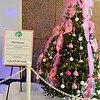 """PINK CHRISTMAS"" by Ladies of Phi Mu Fraternity"