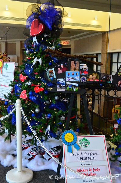 """IT'S A BIRD, IT'S A PLANE.....IT'S PEDI-FLITE"" sponsored by Mickey and Judy McLellan  1st Place for ""Best LeBonheur Tree"""
