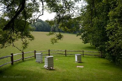 "Ticehurst,  ""One fe the finest gardens in England"""