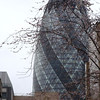 The Gherkin - 3 St Mary Lane Tower