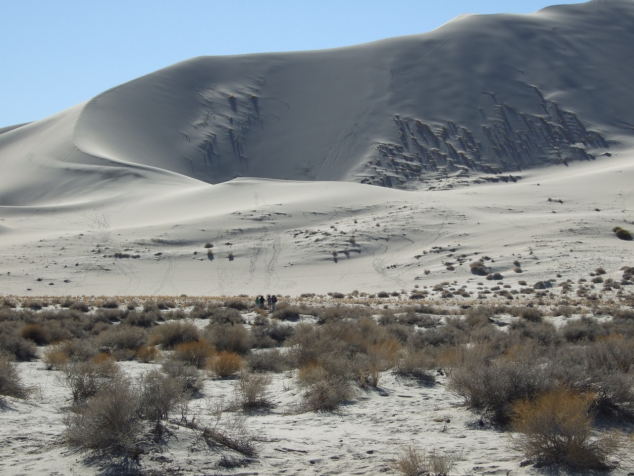 A closer view; the scale of the dune is mind-boggling