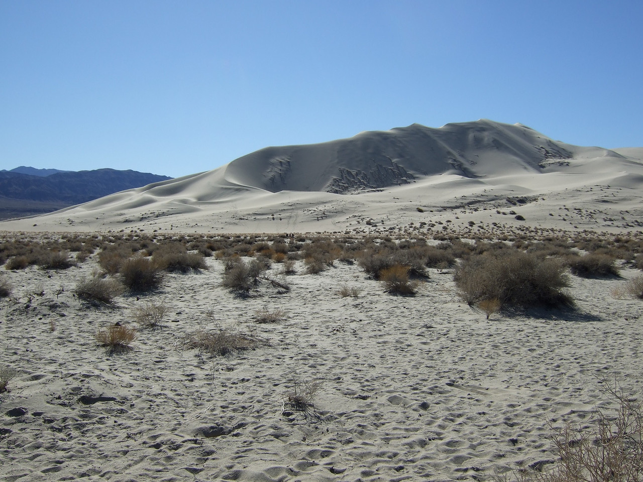 A foursome sets off for the dune. Those are the Saline Mountains behind the dune.