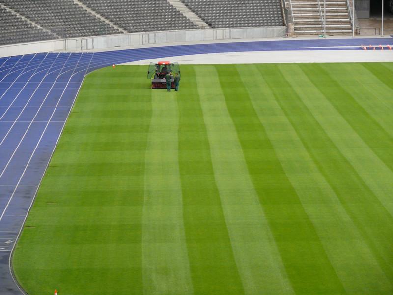Olympic Stadium grass cutting.