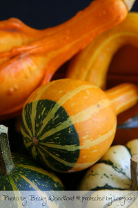 Small gourds
