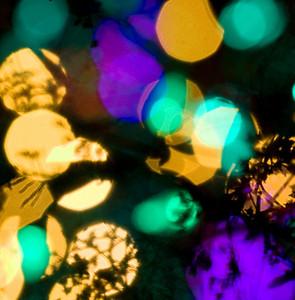 2007 Dec 10 063_edited-2