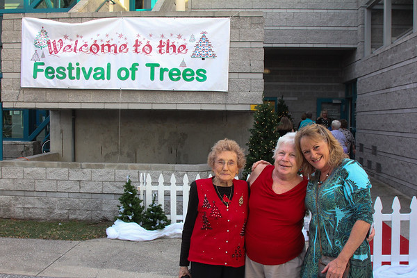 Festival of Trees, Clearwater FL 11 21 2013