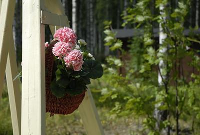 Finland 2011