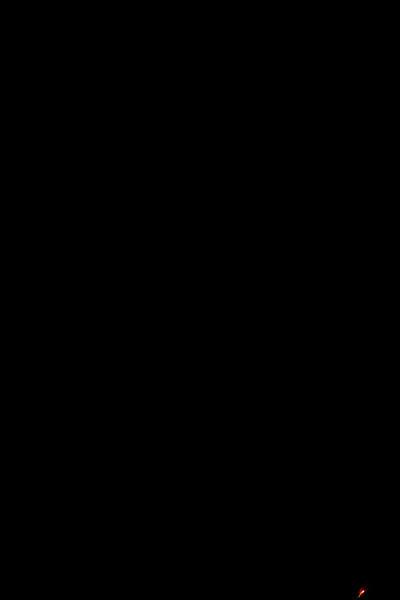 JPG-DLS-IMG_1459-4thofJuly
