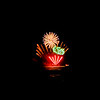 110709-Fireworks-029