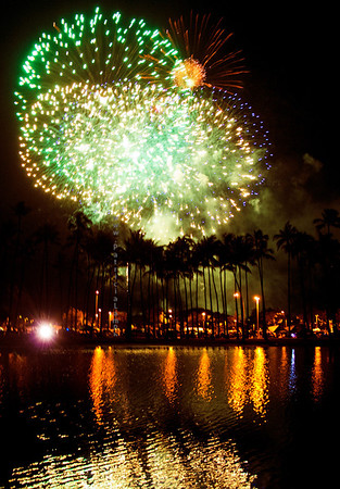 Fireworks green palm trees AlaM 0712 9396