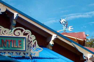 Discovery Island rooftops