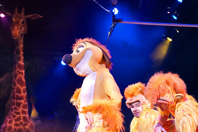 Timon and the Tumble Monkeys
