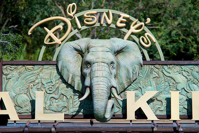 The Elephant in the Sign