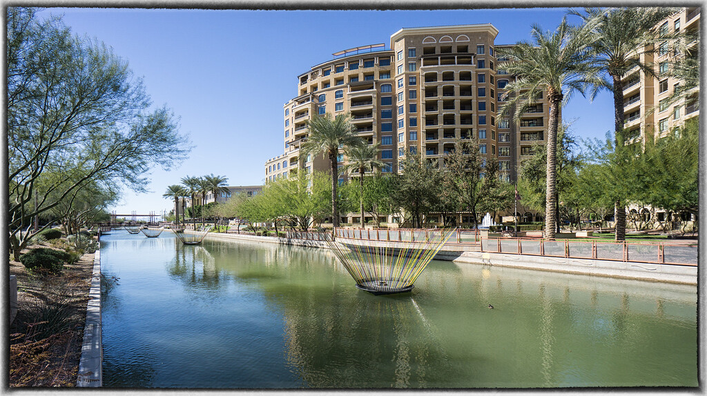 Bruce Munro's Blooms in The Arizona Canal Downtown Scottsdale