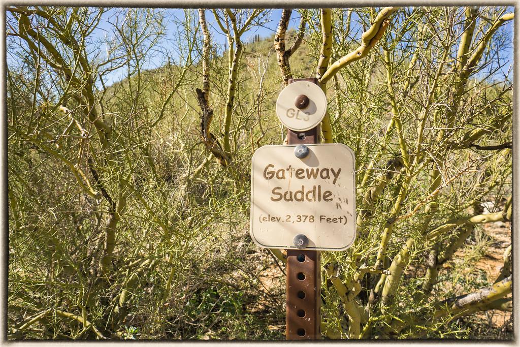 Gateway Saddle
