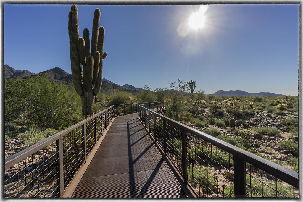 Gateway Trailhead,  McDowell Sonoran Preserve Scottsdale