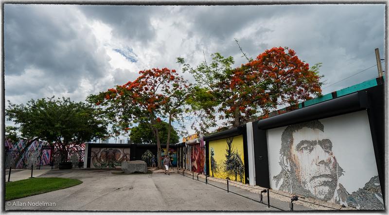 Wynwood Arts District Miami