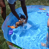 Charlie goes for a swim in the pool at the lake house ( 2012 )