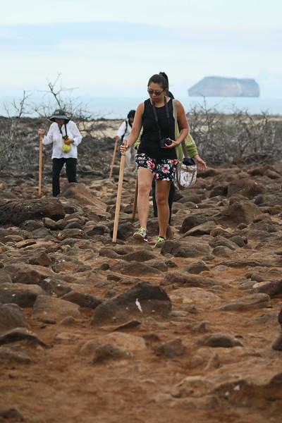 Galapagos - Day 5 - North Seymour Island - Walking Tour 564
