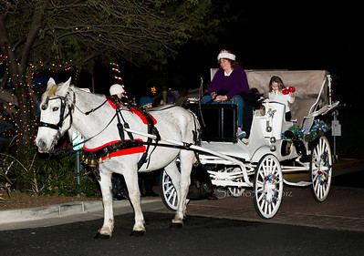 horse & Carriage Carefr 6140