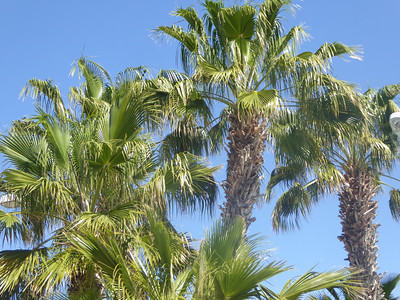 Gran Canaria -18